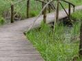 biebrzanski_park_narodowy_mostek